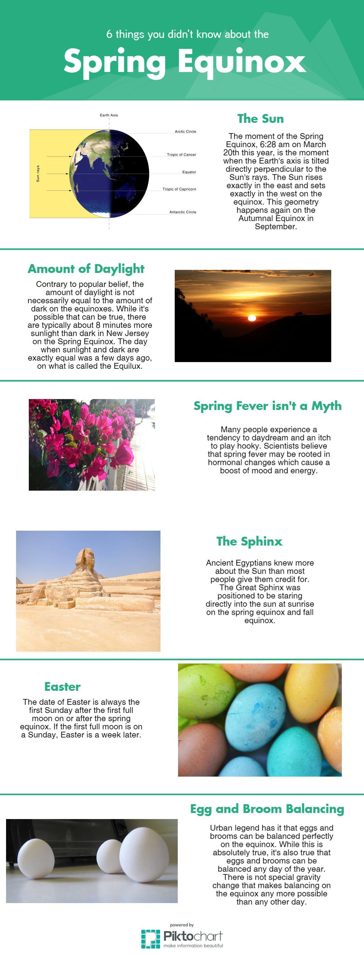 spring equinox infographic