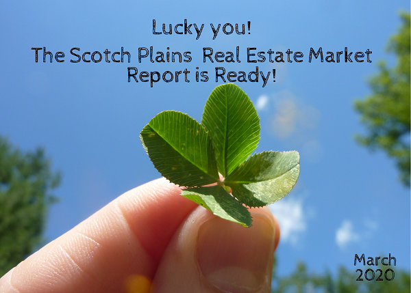 Team Zuhl's real estate market update for scotch plains, NJ